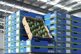 Seeka profit soars in first half