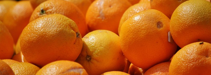 EU takes more southern African citrus