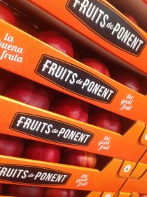 Fruits de Ponent B