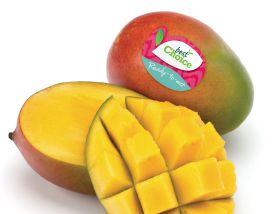 Special Fruit picks up green award