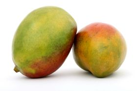 Danper exports first mangoes from Ecuador