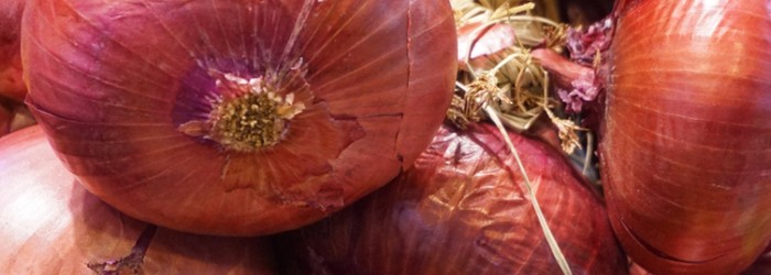 Onions hailed as ingredients of success