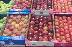 Serbian apple exporter looks further east
