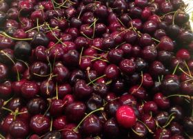 Greek cherries build up reputation