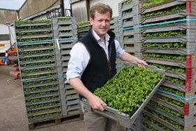 Interview: Charles Shropshire's produce heritage