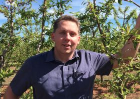 Robert Lumley joins Cutri Fruit