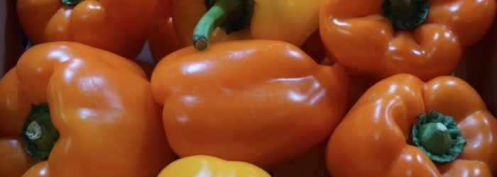 Plenty of potential for European peppers