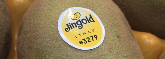 Jingold secures support from Gruppo Mazzoni