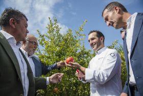 Mollar de Elche launches new campaign