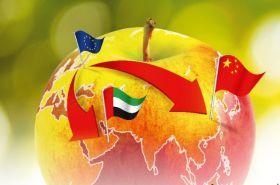 Europe set for bicolored apple harvest