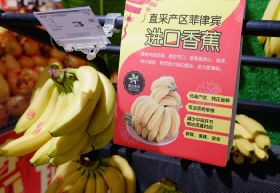 China reopens to Philippine banana shippers