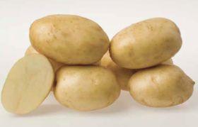 New potato is a Beauty