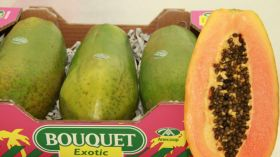 Papaya production moves to mainland Spain