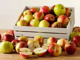 RP Frukt extends Swedish apple season