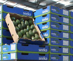 Seeka settles insurance claim