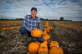 Lidl prepares for peak pumpkin sales
