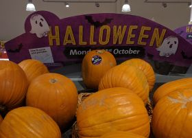 Ghoulish gourds hit shelves for Halloween