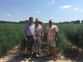 Global Plant Genetics partners with Fox Seeds