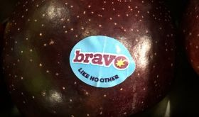 Bravo season launches in Western Australia