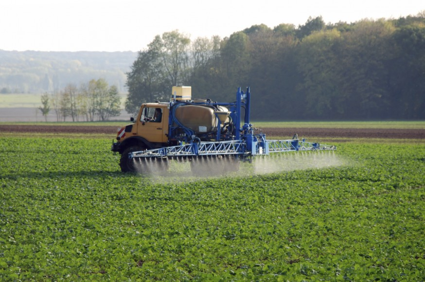 Sumitomo and BASF join forces to create new fungicide