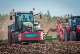 High potato prices push PI turnover over £200m