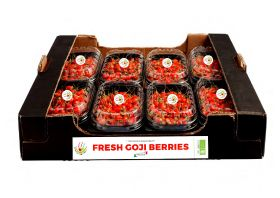 All systems goji for new Italian berry