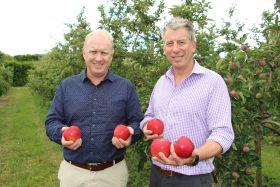 New apple set to Dazzle