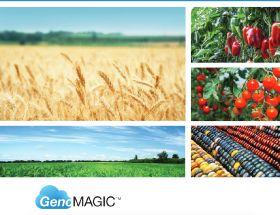 Syngenta turns to NRGene for breeding aid