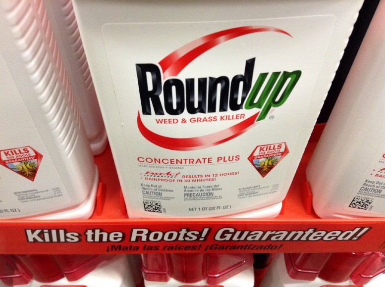 Glyphosate herbicides linked to fatty liver disease