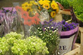 New Covent Garden delays flower market move-in