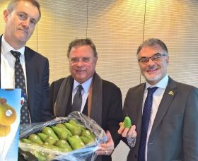 Belgian pears close in on Brazil