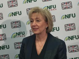 Leadsom vows to uphold food standards in US deal
