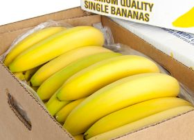 Fyffes to launch Central America grad placements