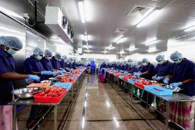 Pomegranate jv boosts jobs