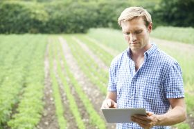 Agribusiness best placed to capitalise on IoT