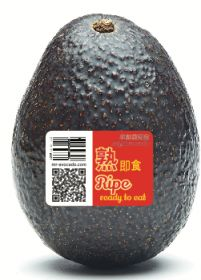 Mr Avocado ripening centre opens in China