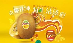 JD.com launches flagship Zespri store