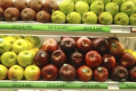 UK organic sales hit record high