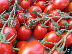 Mexican tomato decision 'threatens jobs'