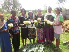 Hazera backs African agri development
