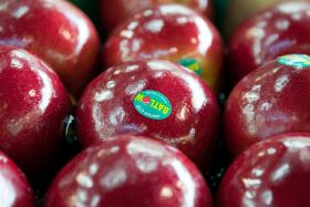Greenlight for Batlow Apples buy-out