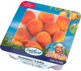 SanLucar extends apricot window