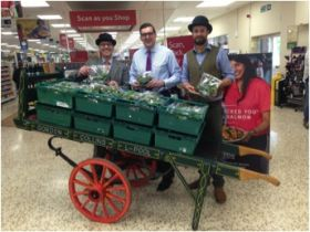 Watercress season opens with fancy dress and hampers