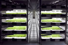 High-tech farm spreads to Middle East