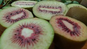 Zespri working to get red right