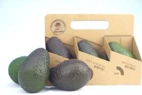 Bravocado seeks more avocado sales