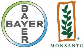 Bayer-Monsanto deal rests on BASF