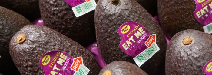 Why have avocados become so popular?