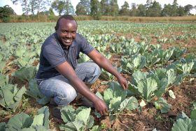 Aldi helps Kenyan farmers through Farm Africa