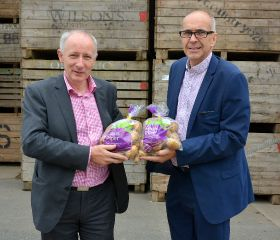Optimistic outlook for NI potatoes